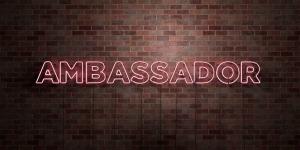 AMBASSADOR - fluorescent Neon tube Sign on brickwork